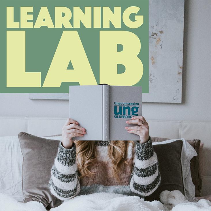 LearningLab_Web_Ikon_732x732_02